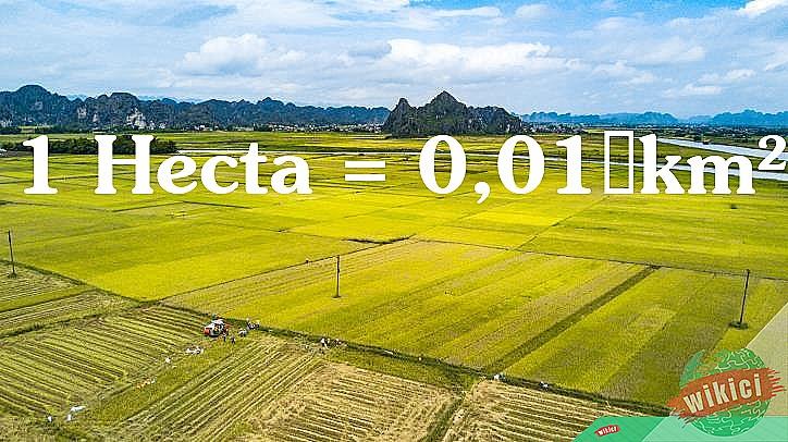 1 Hecta = 0,01km²= 10.000 m²