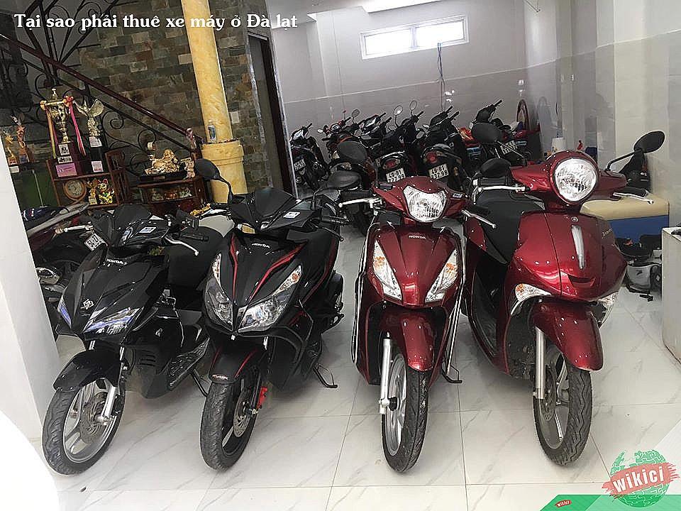 Tại sao phải thuê xe máy ở Đà lạt
