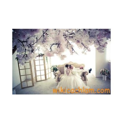 10 chuẩn bị cơ bản nhất cho một đám cưới-3