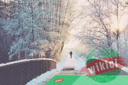 Những bài thơ về mùa đông buồn, tâm trạng-4