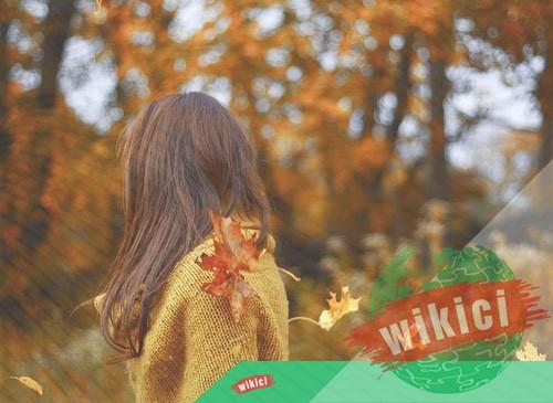 Những bài thơ về mùa thu buồn, lãng mạn hay nhất-3