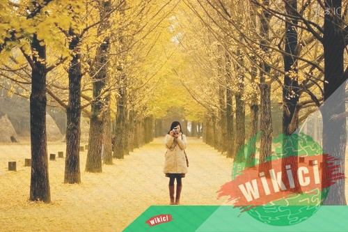 Những bài thơ về mùa thu buồn, lãng mạn hay nhất-5
