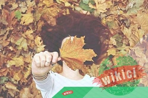 Những bài thơ về mùa thu buồn, lãng mạn hay nhất-6