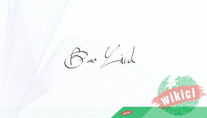Chữ ký tên Linh – Những mẫu chữ ký tên Linh đẹp nhất-13