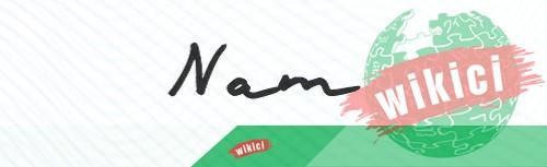 Chữ ký tên Nam – Những mẫu chữ ký tên Nam đẹp nhất-6