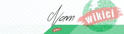 Chữ ký tên Nam – Những mẫu chữ ký tên Nam đẹp nhất-7