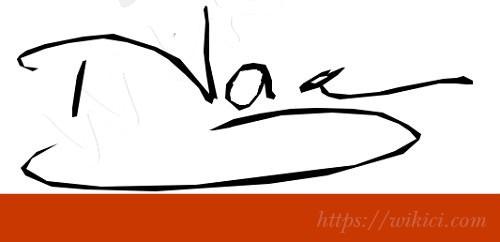 Chữ ký tên Nga – Những mẫu chữ ký tên Nga đẹp nhất-3