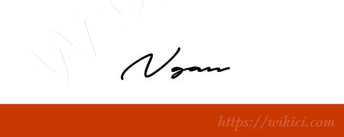 Chữ ký tên Ngân – Những mẫu chữ ký tên Ngân đẹp nhất-11