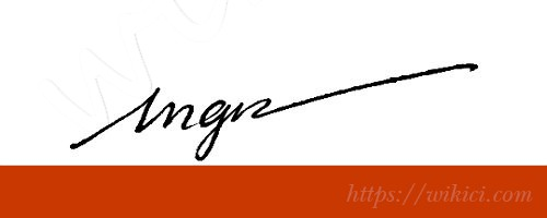 Chữ ký tên Ngân – Những mẫu chữ ký tên Ngân đẹp nhất-2