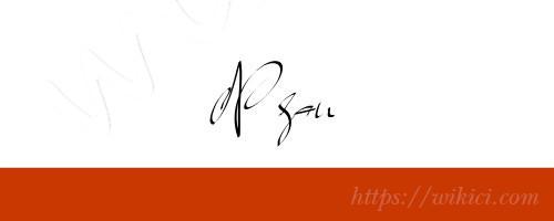 Chữ ký tên Ngân – Những mẫu chữ ký tên Ngân đẹp nhất-8