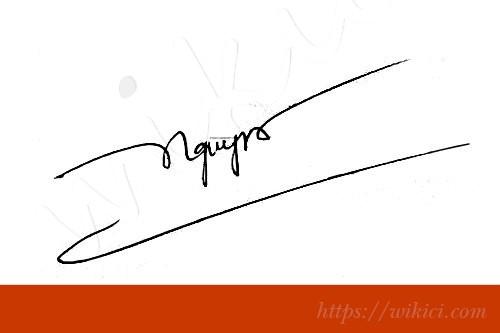 Chữ ký tên Nguyên – Những mẫu chữ ký tên Nguyên đẹp nhất-1