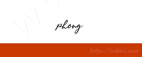 Chữ ký tên Phong – Những mẫu chữ ký tên Phong đẹp nhất-3