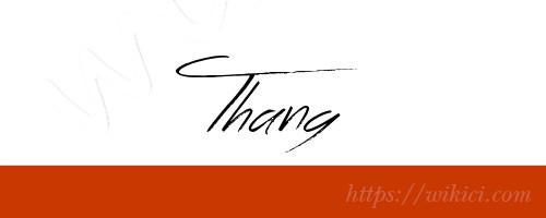 Chữ ký tên Thắng – Những mẫu chữ ký tên Thắng đẹp nhất-11