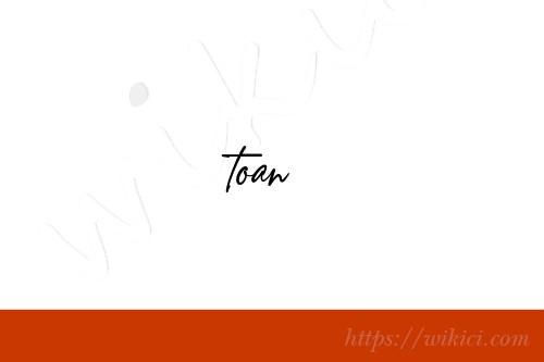 Chữ ký tên Toàn – Những mẫu chữ ký tên Toàn đẹp nhất-1