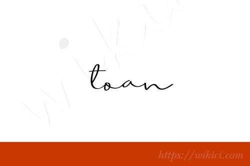 Chữ ký tên Toàn – Những mẫu chữ ký tên Toàn đẹp nhất-2