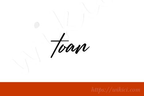 Chữ ký tên Toàn – Những mẫu chữ ký tên Toàn đẹp nhất-3