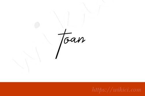 Chữ ký tên Toàn – Những mẫu chữ ký tên Toàn đẹp nhất-7