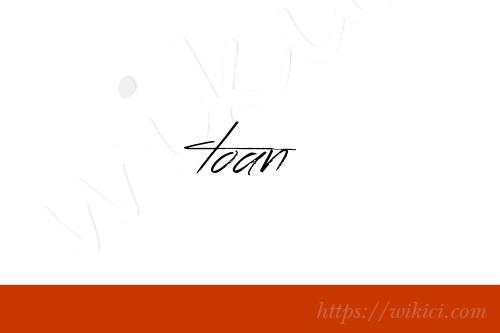 Chữ ký tên Toàn – Những mẫu chữ ký tên Toàn đẹp nhất-8