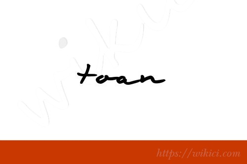 Chữ ký tên Toàn – Những mẫu chữ ký tên Toàn đẹp nhất-9