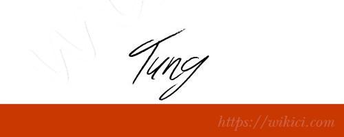 Chữ ký tên Tùng – Những mẫu chữ ký tên Tùng đẹp nhất-10