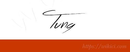 Chữ ký tên Tùng – Những mẫu chữ ký tên Tùng đẹp nhất-11