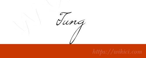 Chữ ký tên Tùng – Những mẫu chữ ký tên Tùng đẹp nhất-12