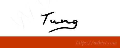 Chữ ký tên Tùng – Những mẫu chữ ký tên Tùng đẹp nhất-3