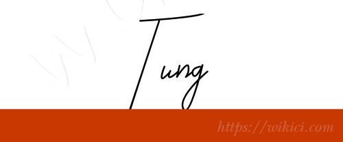 Chữ ký tên Tùng – Những mẫu chữ ký tên Tùng đẹp nhất-4