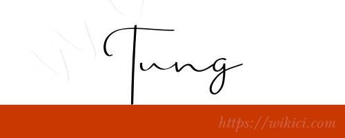 Chữ ký tên Tùng – Những mẫu chữ ký tên Tùng đẹp nhất-5