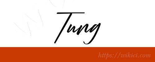 Chữ ký tên Tùng – Những mẫu chữ ký tên Tùng đẹp nhất-6