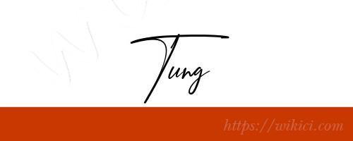 Chữ ký tên Tùng – Những mẫu chữ ký tên Tùng đẹp nhất-8