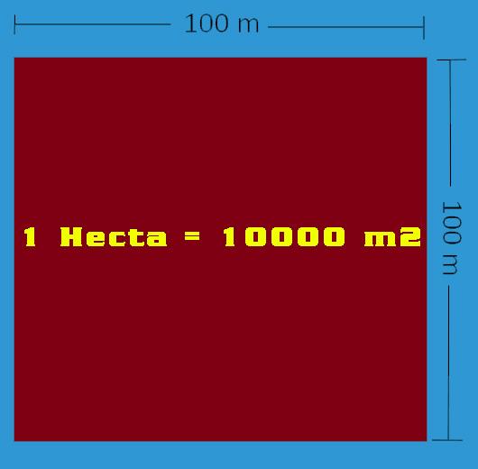 1 hecta bằng bao nhiêu m2? Đổi Hecta sang m2