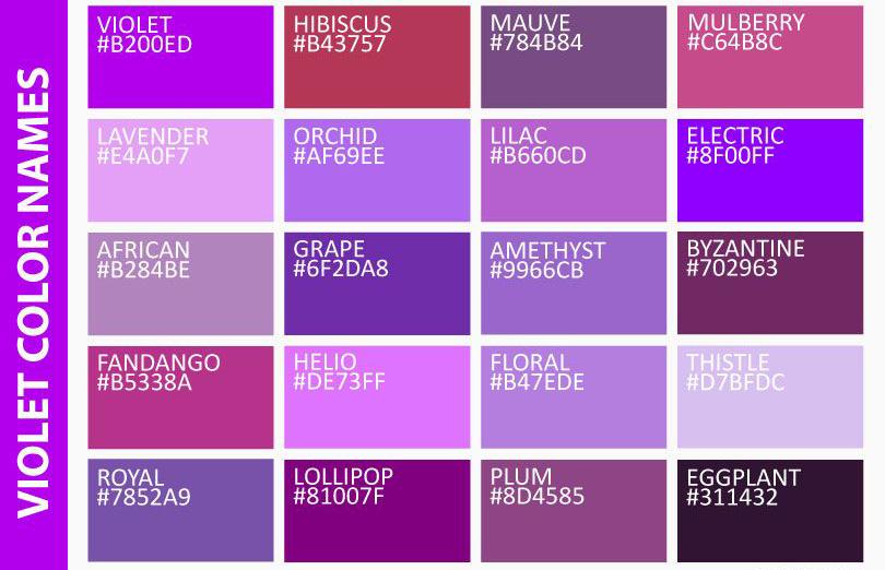 Màu tím là màu gì - ý nghĩa và các loại màu tím cơ bản