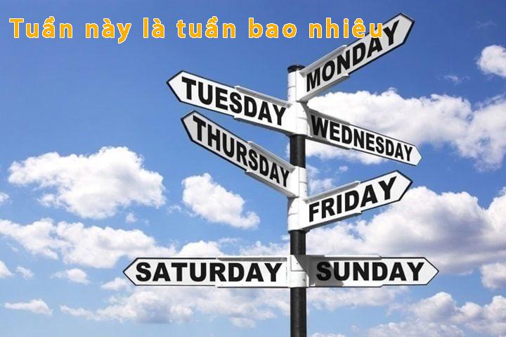 Tuần này là tuần bao nhiêu? Cách tính số tuần hiện tại